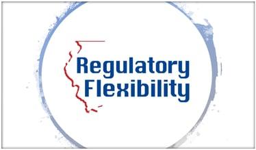 Regulatory flexibility-2